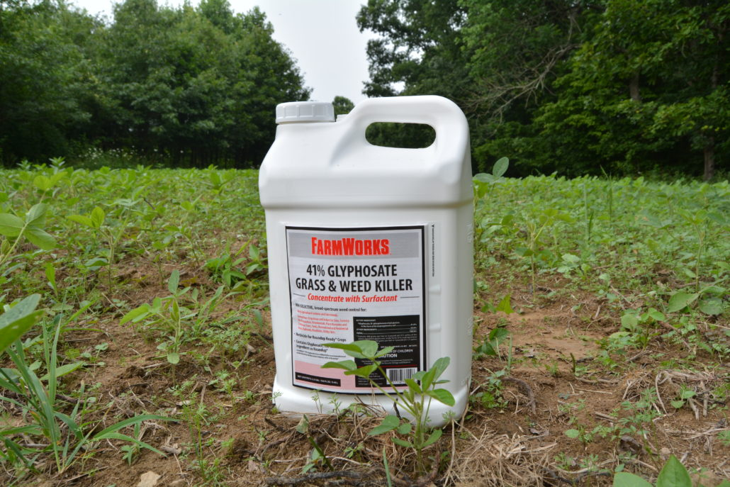 What Are The Very best Total Kill Herbicides That Perform In Your Area?